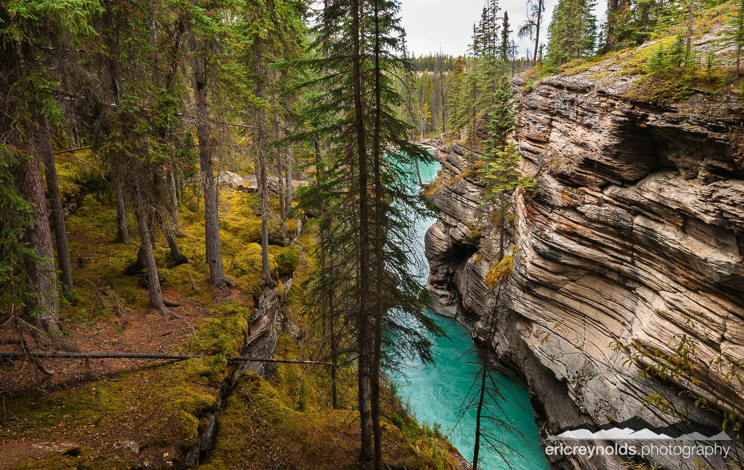 Athabasca Falls Canyon by Eric Reynolds - Landscape Photographer