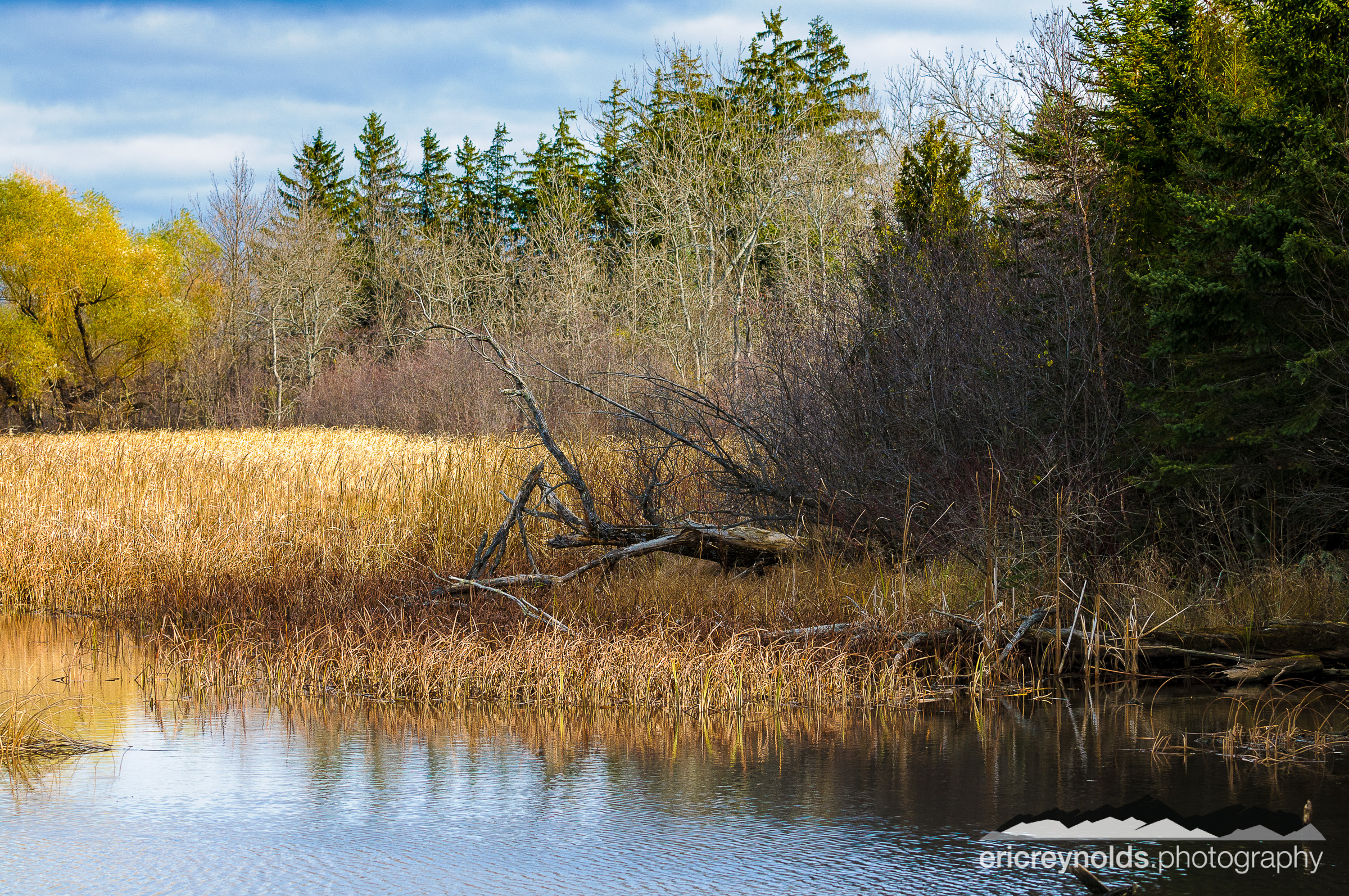 A Northwoods Pond by Eric Reynolds - Landscape Photographer